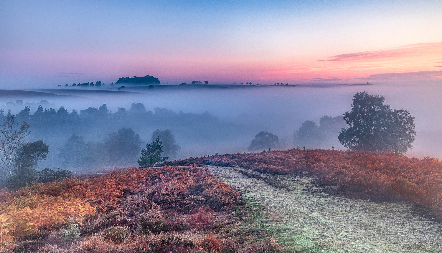 Image result for images of misty autumn morning in hampshire