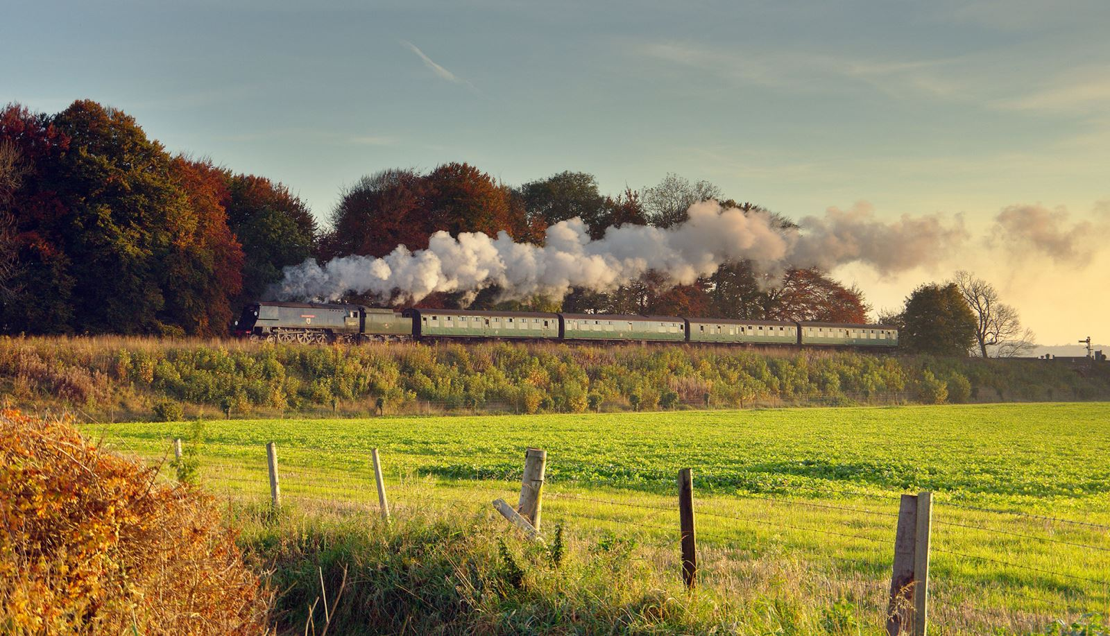 The Watercress Line steaming through the Hampshire countryside