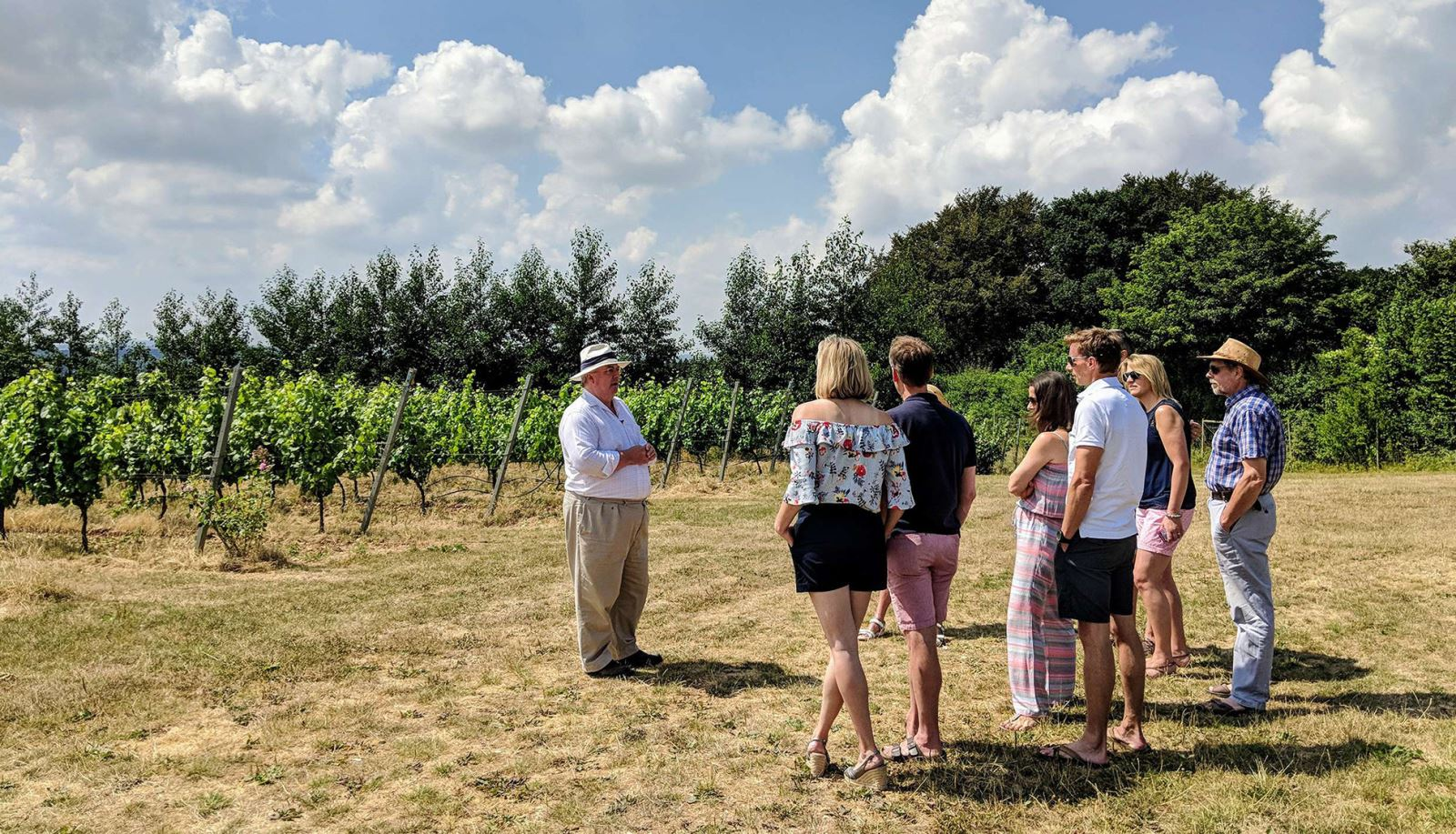Vineyard Tours in Hampshire with Grape & Grain Tours - Hampshire MicroGap