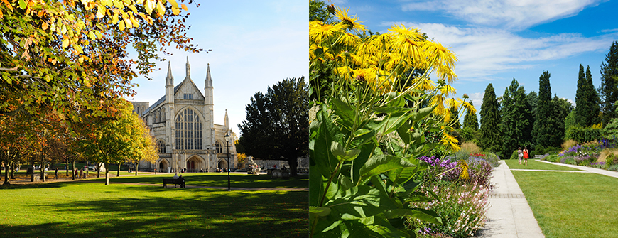Winchester Cathedral and Sir Harold Hillier Gardens