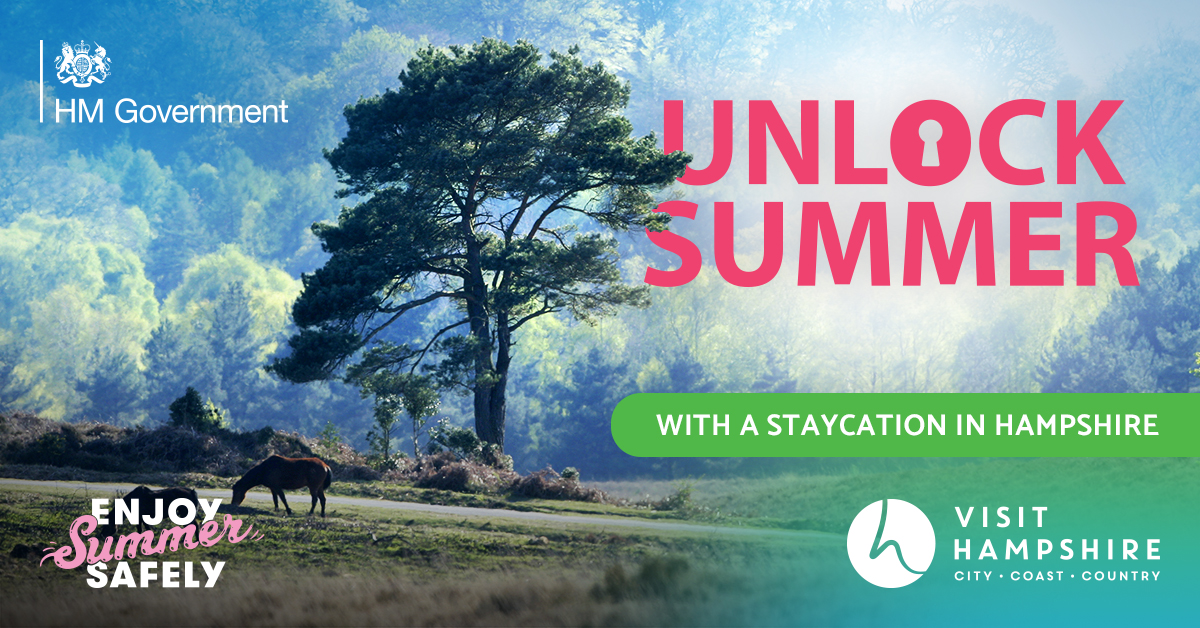 Unlock Summer Competition Banner - New Forest National Park