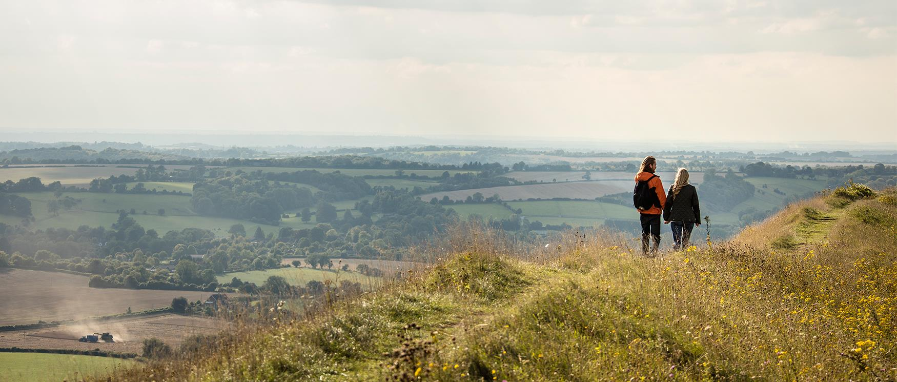 The Best Walks in Hampshire | Walking & Hiking Routes