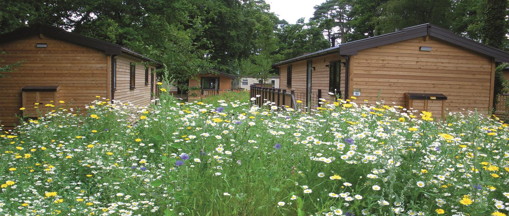 Caravan & Holiday Parks in Hampshire