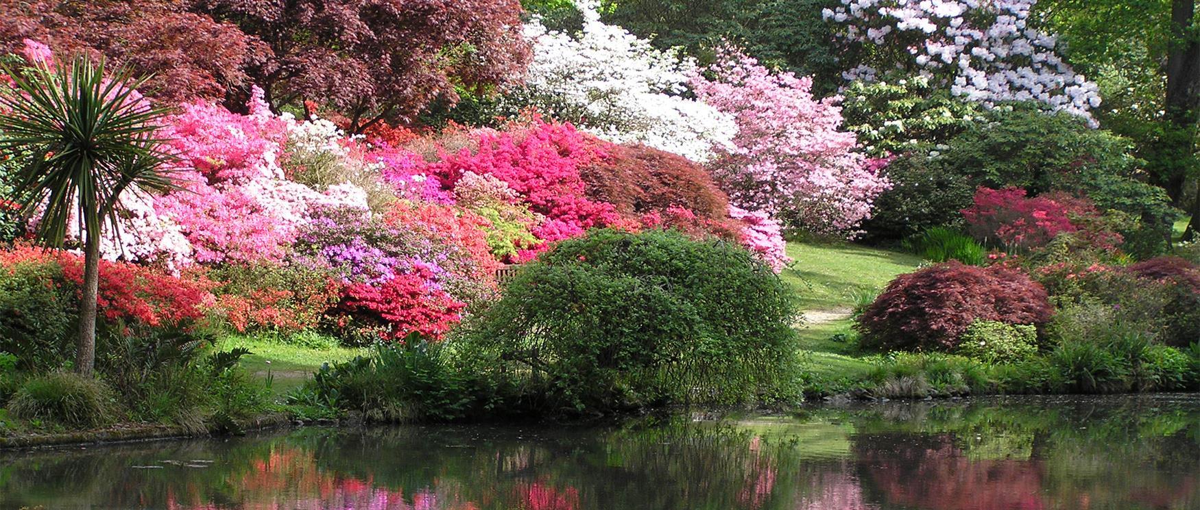 Hampshires Gardens - VisitHampshire.co.uk