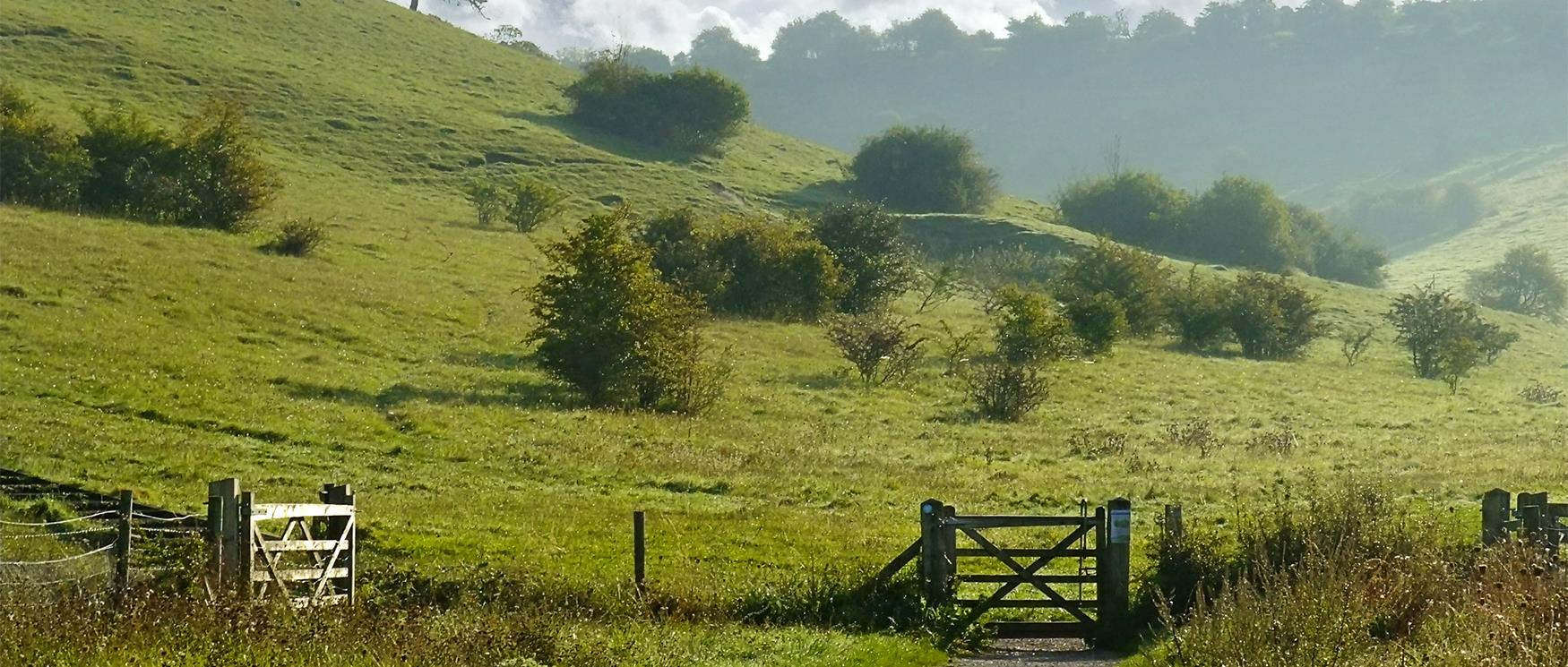 Places To Visit In Hampshire