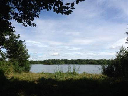 Fleet Pond Circular Walks