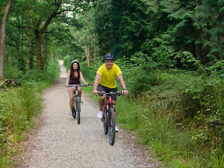 Burley to Bolderwood Deer Sanctuary Cycling Route