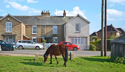 1 Heath View, New Forest Cottages