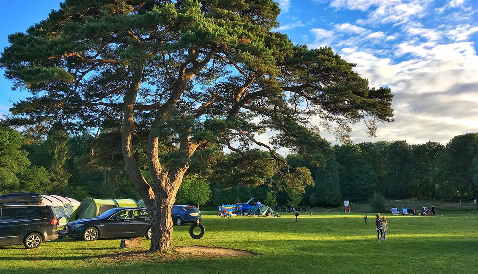 YMCA Fairthorne Manor Campsite