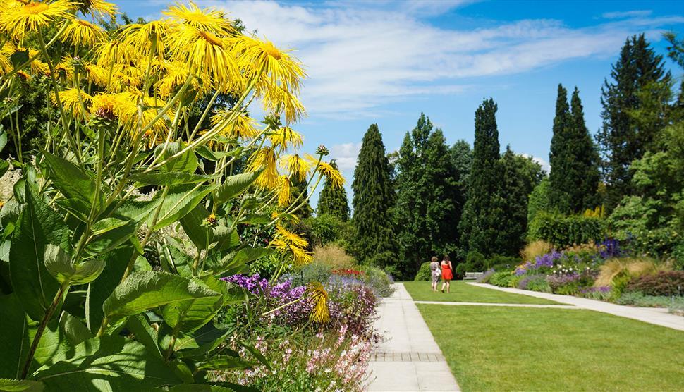 91094cd4918 Sir Harold Hillier Gardens - Visit Hampshire