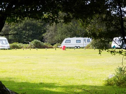 Matley Wood Campsite, New Forest: Visit-Hampshire.co.uk