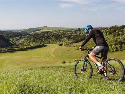 Mountain Biking at Queen Elizabeth Country Park