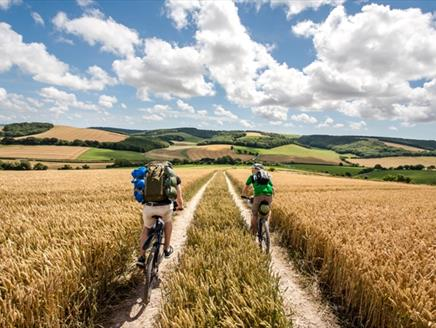 Cycle the South Downs Way
