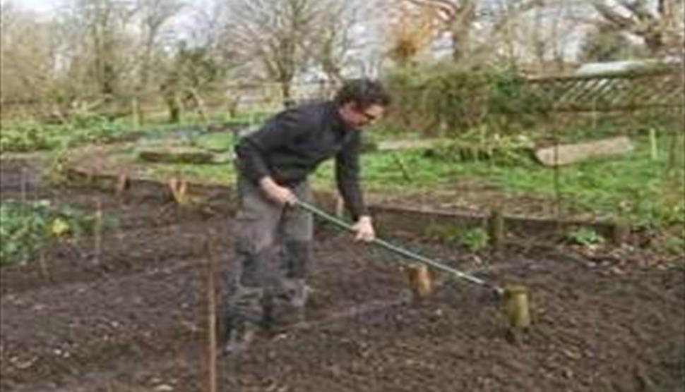 Starting Your Very Own Vegetable Garden At Minstead Study