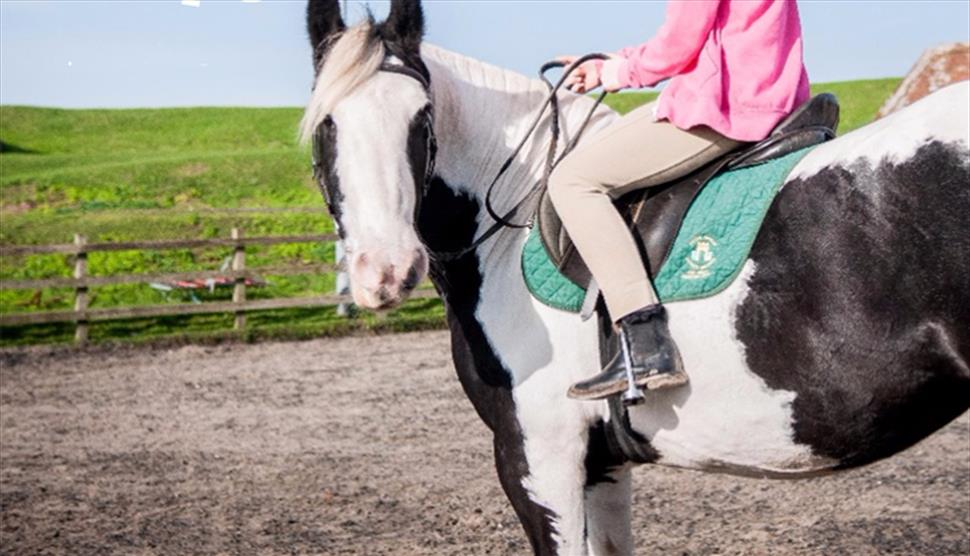 Peter Ashley Activity Centres Fort Widley Equestrian