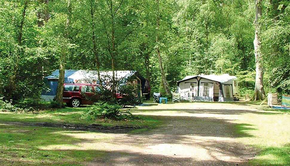 Wellington Country Park - Caravan & Campsite - Riseley - Visit Hampshire