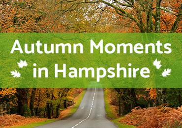 Thumbnail for Discover Hampshire this Autumn and Enjoy Events, A