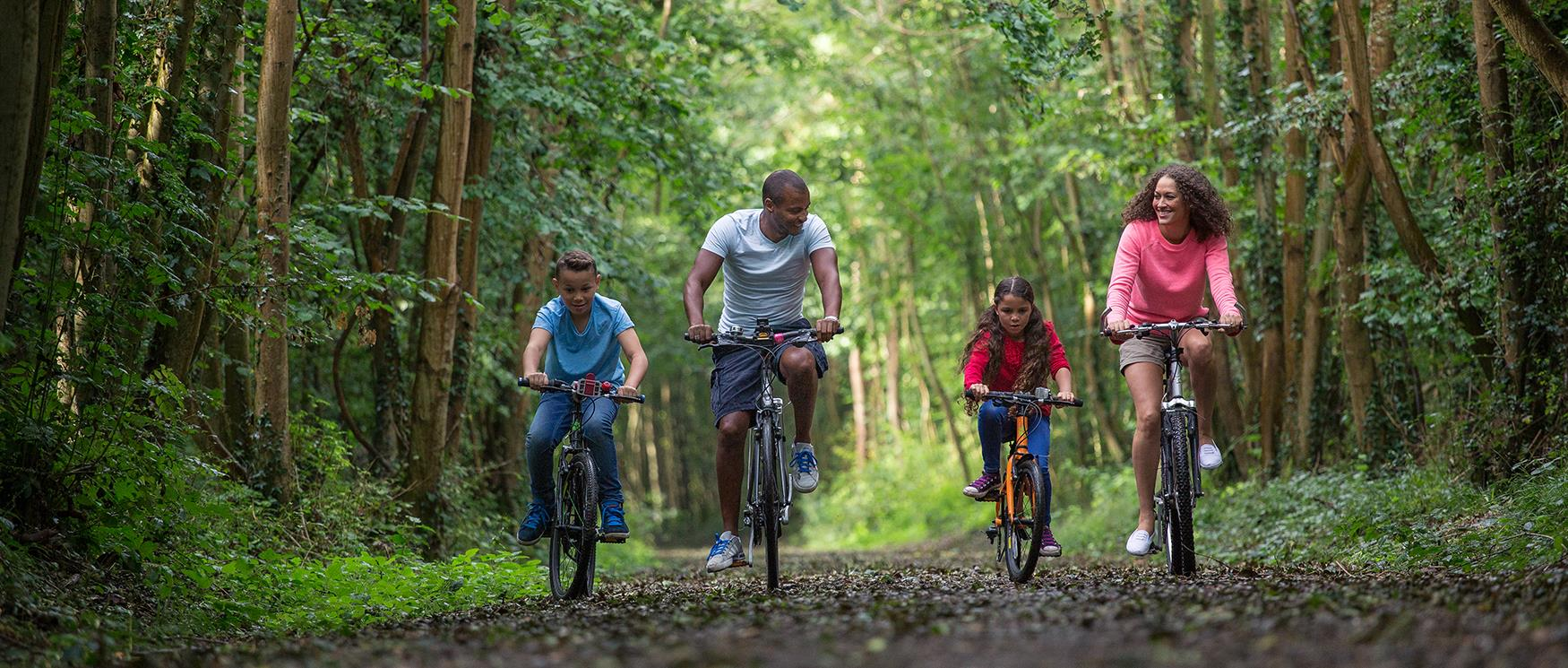 Family Cycle Routes in Hampshire