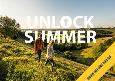 Thumbnail for Unlock Summer