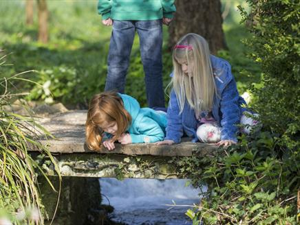 May Half Term at Mottisfont: Garden Detectives
