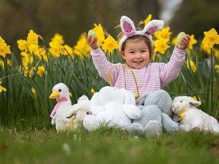 Easter Baby Bunny Photoshoot at Sir Harold Hillier Gardens