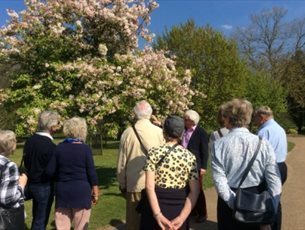 Spring Flowers Guided Evening Tour at Sir Harold Hillier Gardens