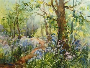 Painting a Bluebell Wood at Sir Harold Hillier Gardens