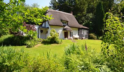 Brook Cottage, New Forest Cottages