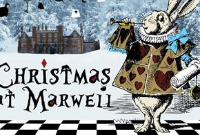 Christmas at Marwell Zoo