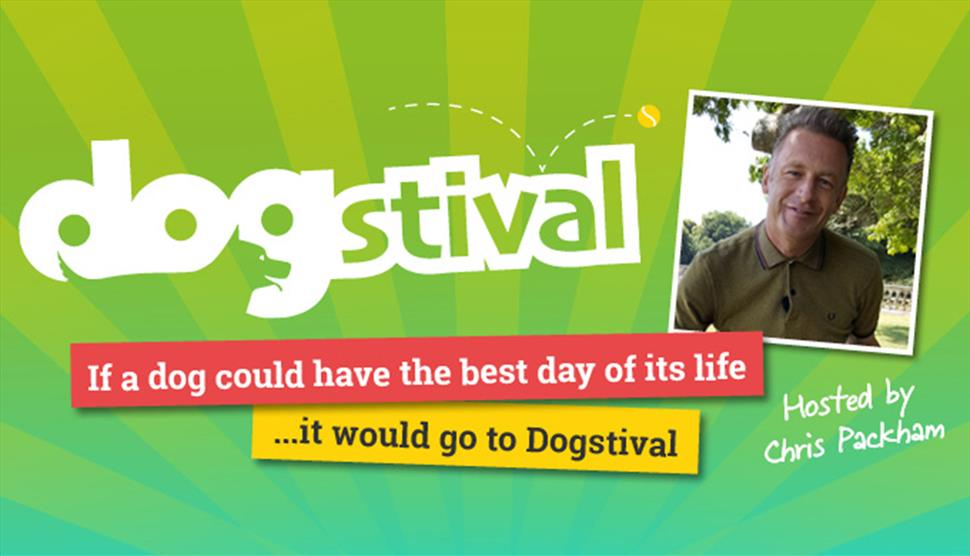 Dogstival New Forest
