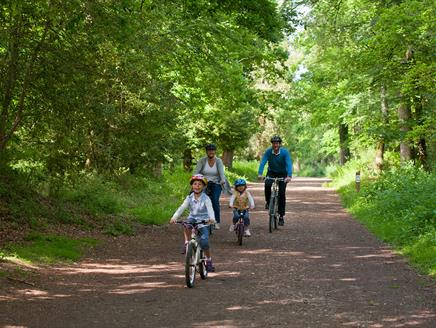 Holmsley to Brockenhurst Off-Road Cycle Route