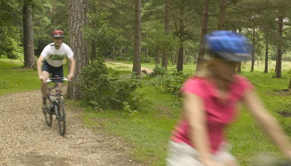 Hampshire South Off Road Cycle Trails