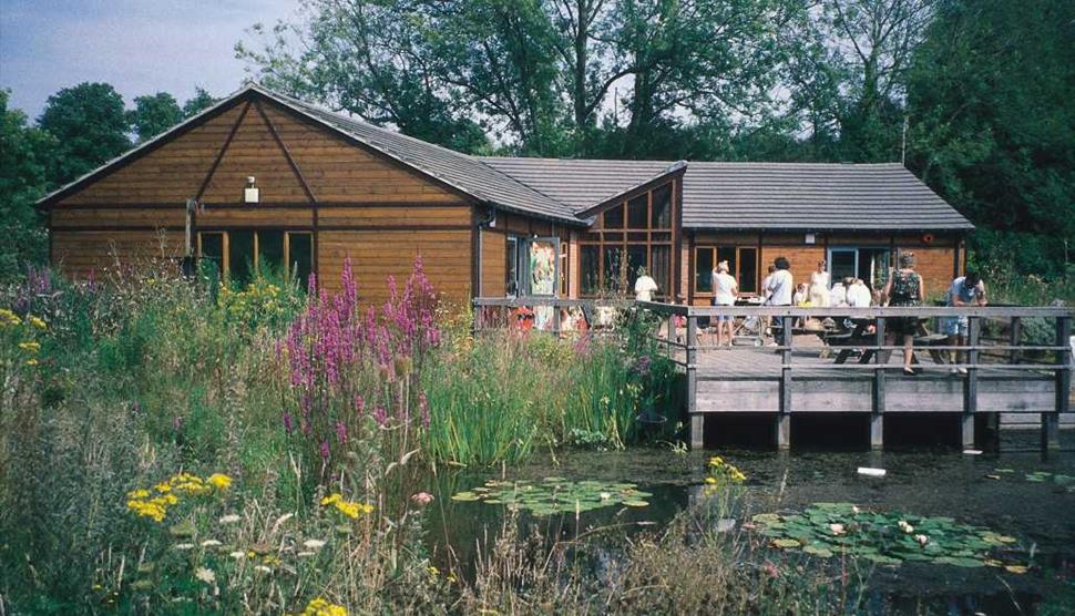 Hawthorns Wildlife Centre