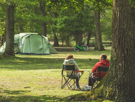 Hollands Wood Campsite, New Forest: Visit-Hampshire.co.uk