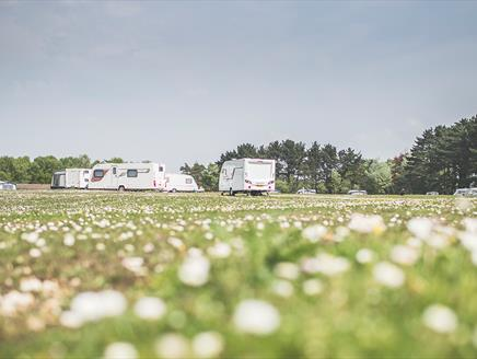 Holmsley Campsite, New Forest: Visit-Hampshire.co.uk