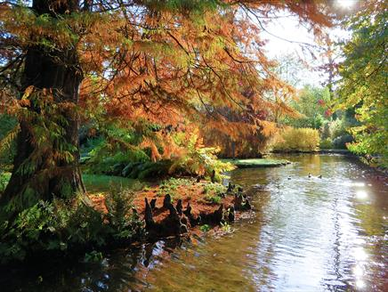 Longstock Park Water Garden Open Days
