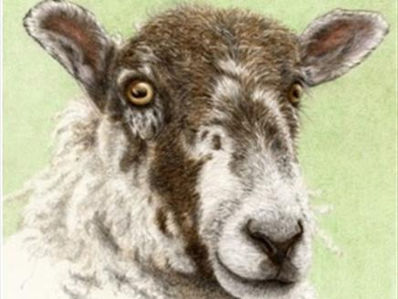 A Sheep in Spring – Art Workshop  at Sir Harold Hillier Gardens