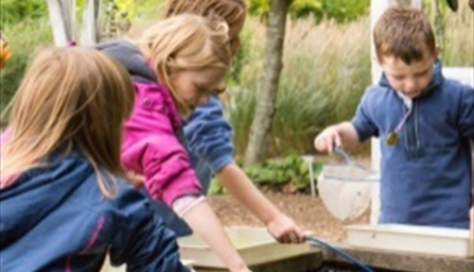 Pond Dipping at Sir Harold Hillier Gardens