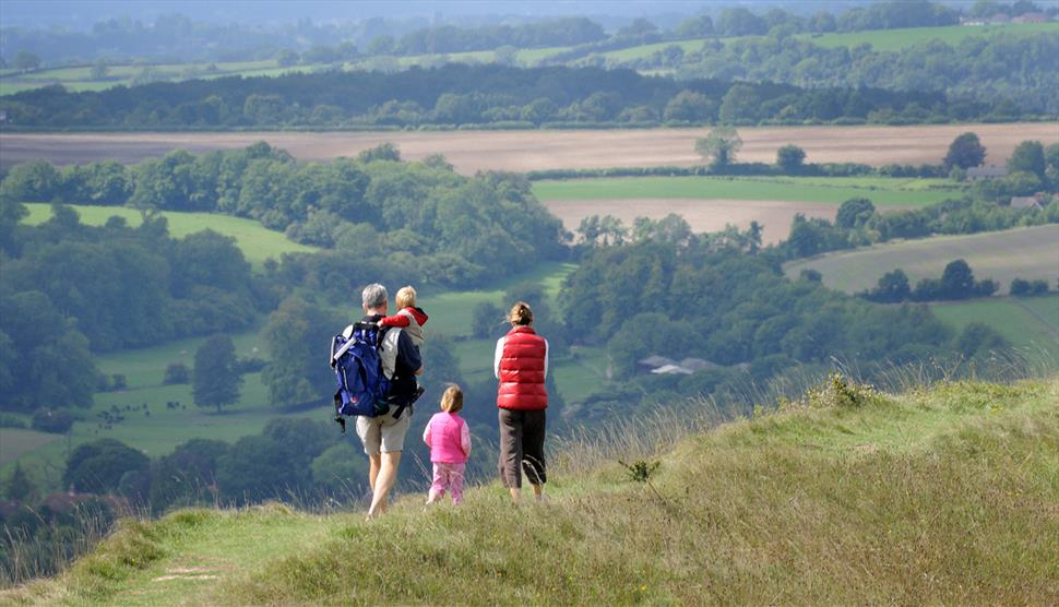 Walking in the South Downs