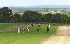 Horse Riding In Hampshire Visithampshire Co Uk
