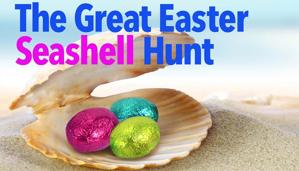 The Great Easter Seashell Hunt at The Diving Museum