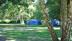 Wellington Country Park - Camping