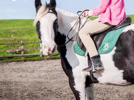 Peter Ashley Activity Centres - Fort Widley, Equestrian Centre