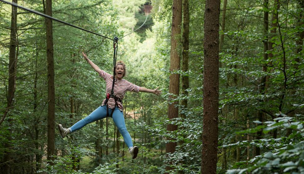 Go Ape At Moors Valley Visit Hampshire