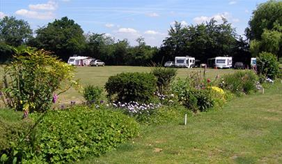 Green Pastures Caravan Park, New Forest