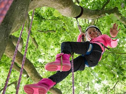 Climb a Tree at Sir Harold Hillier Gardens